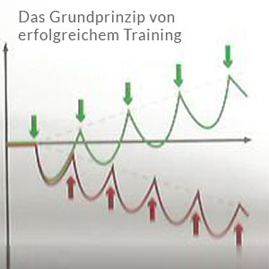 grundprinzip-erfolgreiches-training-2