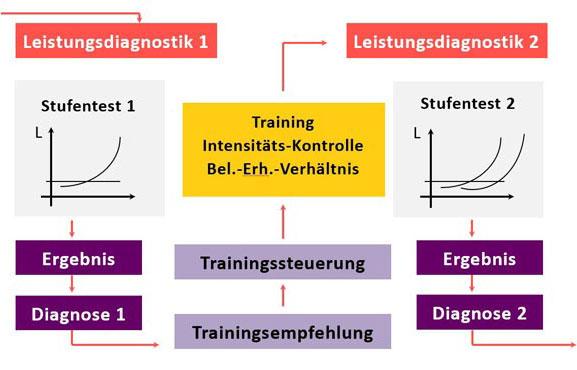 Trainingssteuerung & Leistungssteuerung